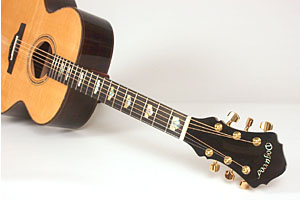 Ordering your Dogwood Guitar